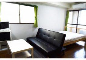 ZEF201 Living room