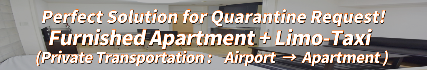Furnished Apartment + Limo-Taxi for Quarantine